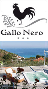 Hotel Gallo Nero